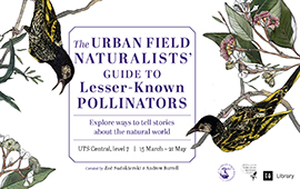 The Urban Field Naturalists' Guide to Lesser-Known Pollinators_promotionblock_what's on